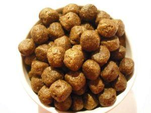 The Best Dog Food Picks For A Healthier Lifestyle