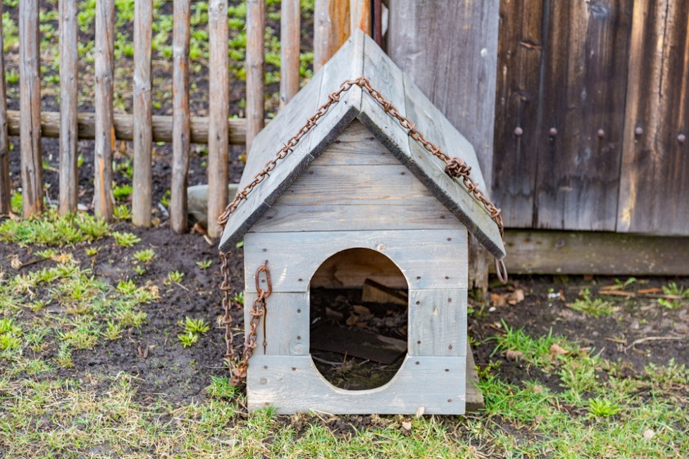 How To Make An Awesome Dog House Do It Yourself Just